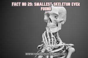 Fact No 29: Smallest Skeleton Ever found