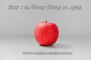 Fact # 38: Whole World in Apple