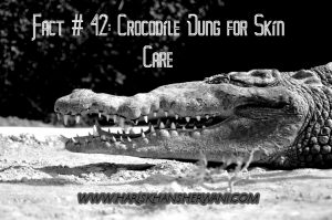 Fact # 42: Crocodile Dung for Skin Care