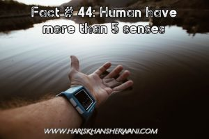 Fact # 44: Human have more than 5 senses